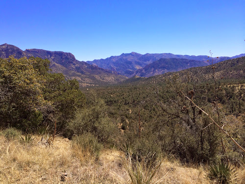 Looking back down on Cave Creek Canyon from junction