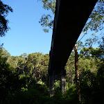 Passing under the bridge in Fullers Park (383195)