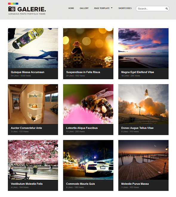 Galerie WP Theme with Responsive Layout