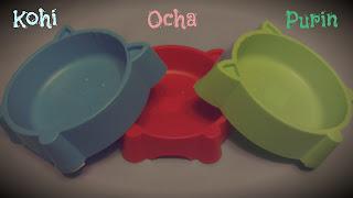 Colourful Cat Food Dish