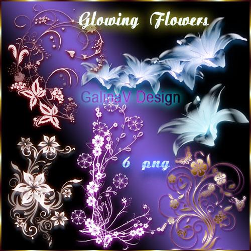 Клипарт PNG - Сияющие цветы