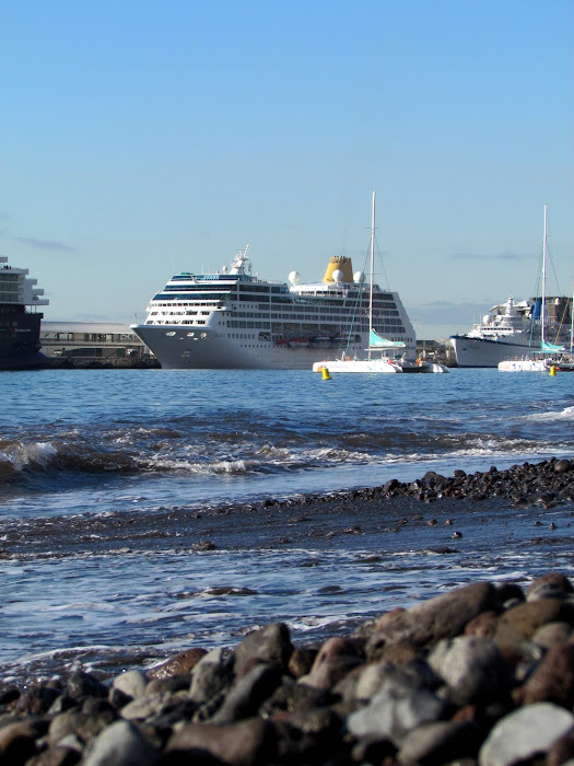 the beach and the ships in Funchal port