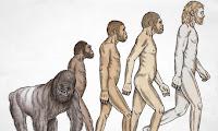 εξέλιξη γορίλα,κρόνιος γορίλας,gorillas evolution,cronian gorilla,nephelim