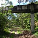Track under sewer bridge at Fullers Park (55364)