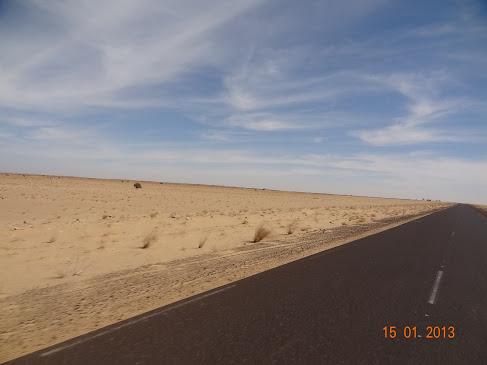marrocos - Marrocos e Mauritãnia a Queimar Pneu e Gasolina - Página 6 DSC06032