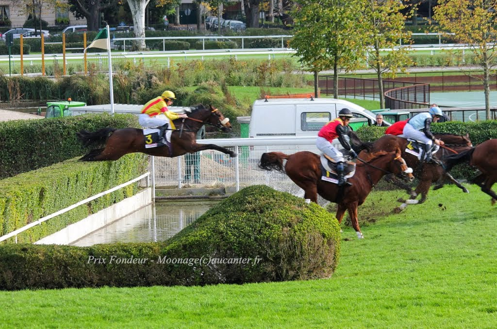 Photos Auteuil 2-11-2014 (48h de l'obstacle) IMG_5281