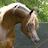 Kathleen Fleming avatar image