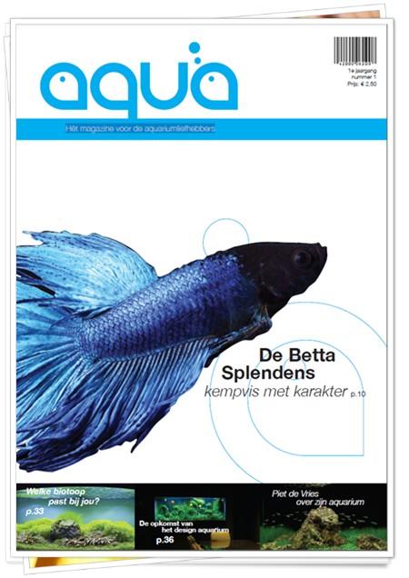 aqua magazine 1