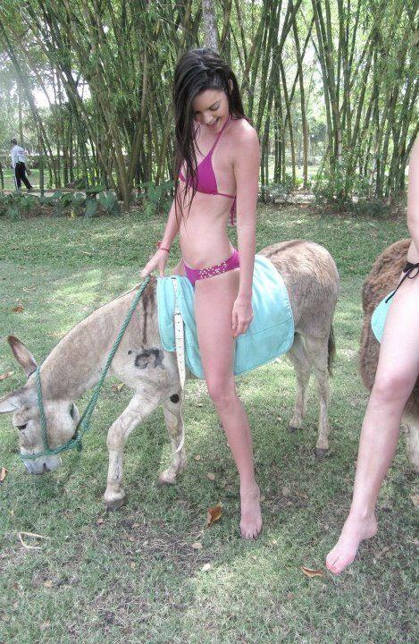 Köpek Kadın Sahibinin Amını Parçalıyor  Porno Resimleri