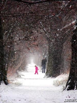 copii si parinti - plimbarea prin zapada