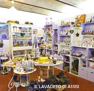 Assisi panorama Assisi da visitare