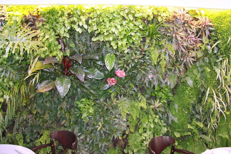 Jardín vertical de interior.