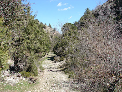 Barranco de la Hoz