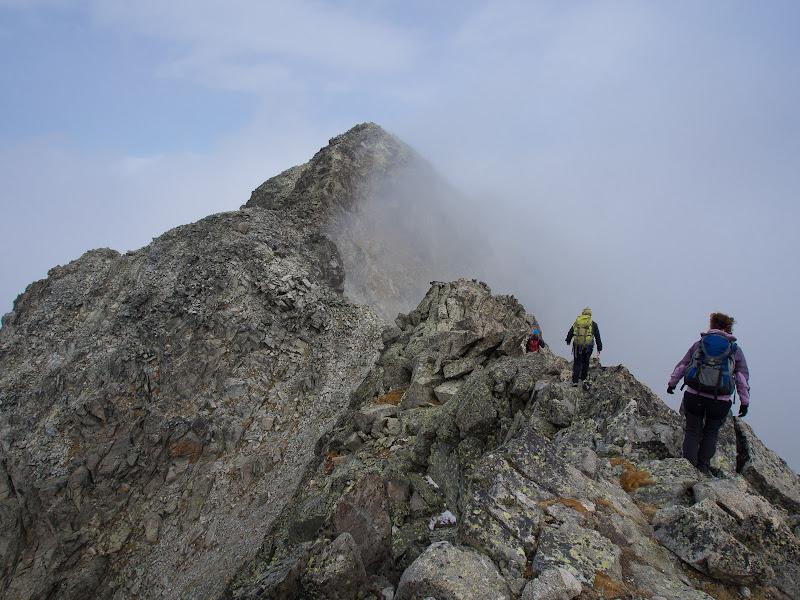 Avancem per la cresta fàcil entre el pic de Comalesbienes i la Punta Alta