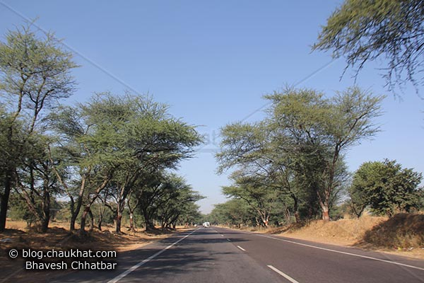 Beautiful Indian road towards Hisar in the month of January 2011