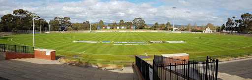 South Australian Amateur Football League, Football Ground, 1 Meyer St, Torrensville SA 5031, Reviews