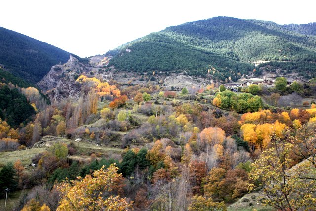 Autumn foliage in Andorra