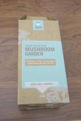 photo of a mushroom garden package