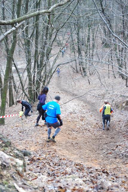 Trail des Marcassins Trail_ses_marcassins_2013%2520%2528191%2529