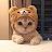 Yusra L avatar image