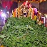 Adhyayanotsavam & Nammazhwar Moksham Dec-21 thru Dec-28, 2013