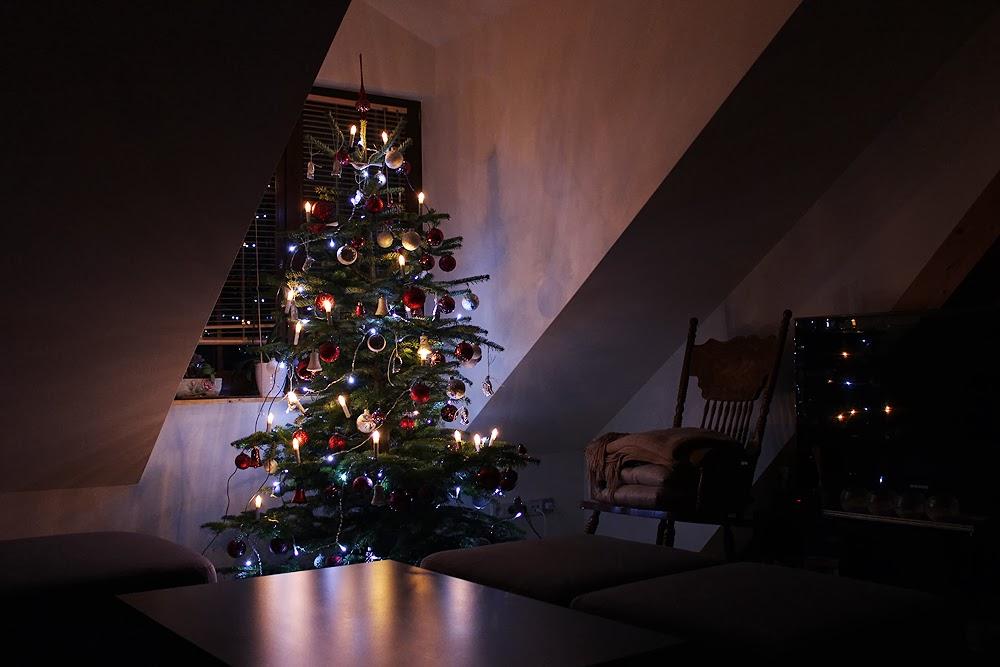 christmas-tree-2013.jpg