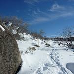 Boulder beside Rock Creek Snowshoe trail (299950)
