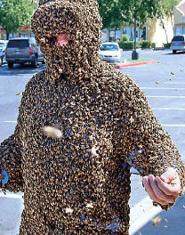 Swarm: Nature's Incredible Invasions