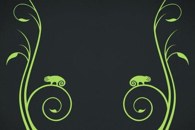 openSUSE Factory, nueva distribución rolling release