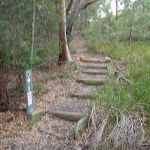 Bradfield Rd arrow marker (54524)