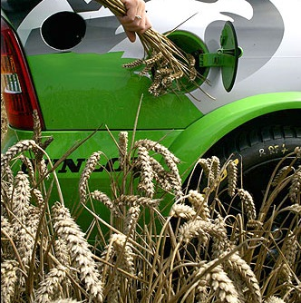 La UE Establece Criterios Sostenibles Para Biocombustibles