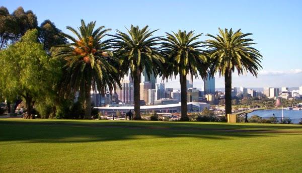 Parque del Rey y Jardín Botánico, Perth