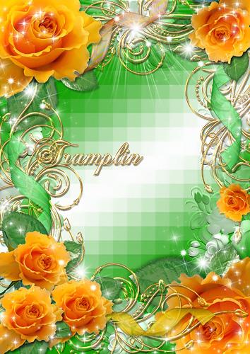 Рамка для Photoshop – Роза в золоте кудрей. Роза нежно колыхается. В розах золото лучей…