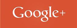 8051 Google+
