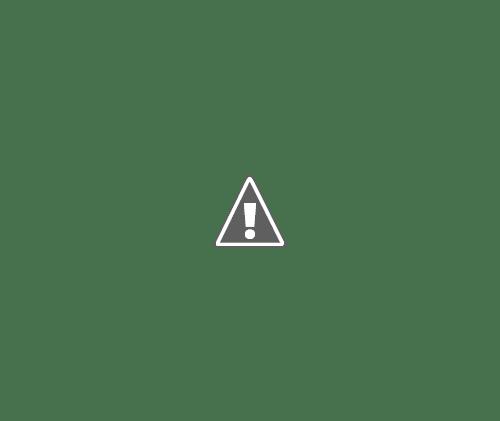02 06 2013 12+copy - Сервировка обеденного стола