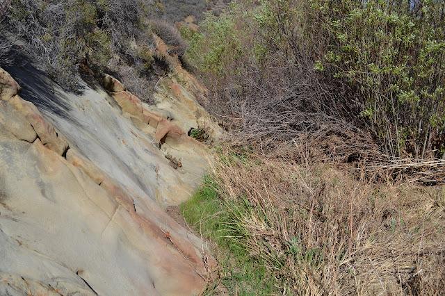 slope of sandstone beside the creek