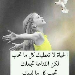 محمد سليمان عوض