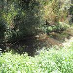 Track viewing Devlin's Creek (79681)