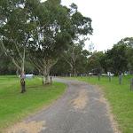 Loop road around Violet Hill campsite