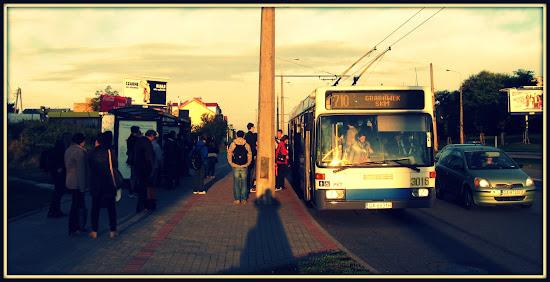 trolejbus 710 na przystanku w gdyni