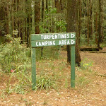 Sign to Turpentines camping area in the Watagans (320546)