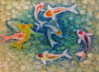 Koi Koi goldfish