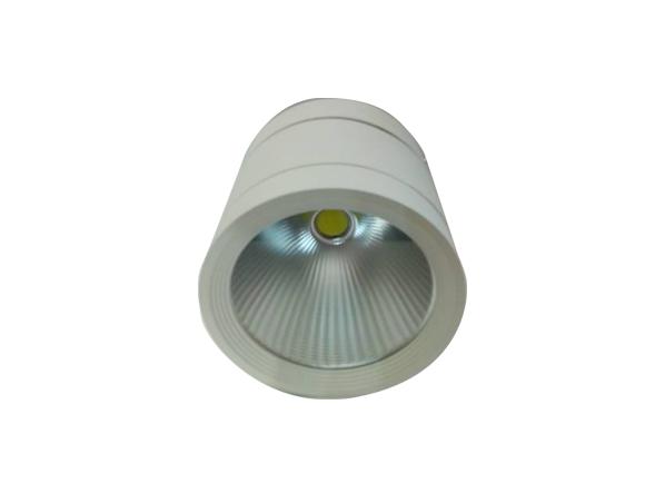 den downlight lap noi DLR 15 O115D Trang