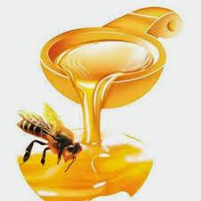 Tác dụng của Mật ong - Sữa Ong chúa với sức khỏe
