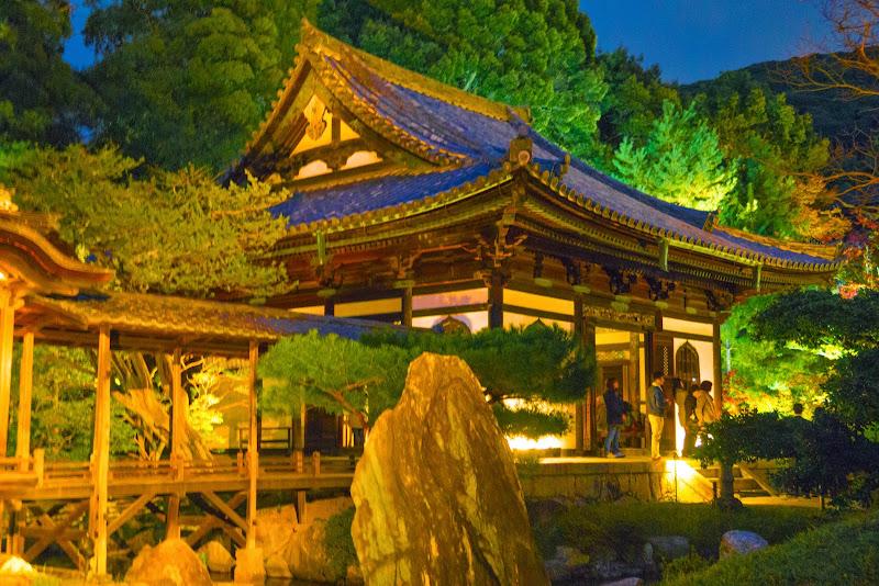 京都 高台寺 紅葉 ライトアップ 写真3