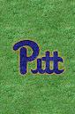 Pitt%252520Throwback%252520Grass.jpg