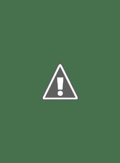 Escritor Carlos Eduardo Zavaleta
