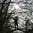 Jovan Williams avatar image