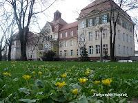 Aleksandra Hajduk - Szpital Miejski