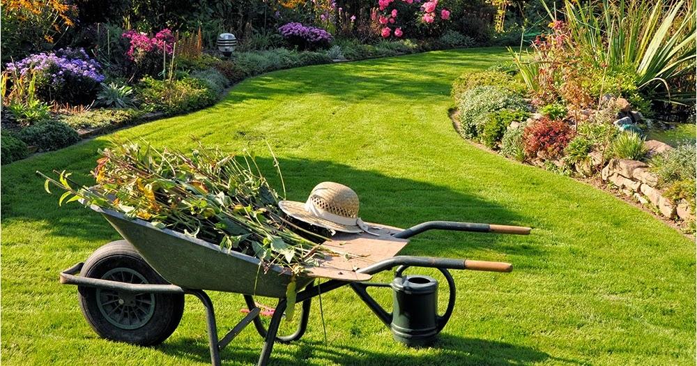 Testclod le jardin et ses accessoires for Accessoire jardin